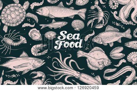 seafood. hand drawn underwater world vector sketch