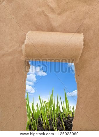 A hole torn in a piece of paper with sky and grass showing through