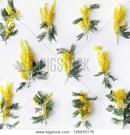 Overhead view of bouquet of yellow mimosa pattern isolated on white background