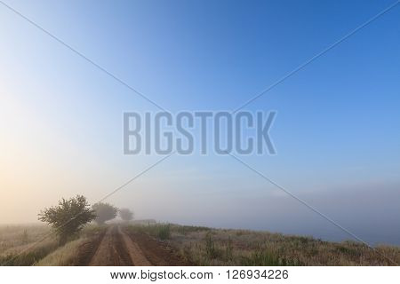 Misty dawn early morning nature grassland landscape view in russian countryside. Mysterious Volga river rural road in fog with vivid colors.