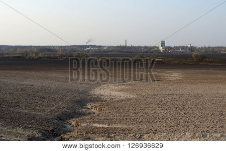 Plowed and sown agricultural field, spring season