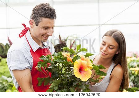 Smiling Salesman Sells A Plant To A Pretty Customer