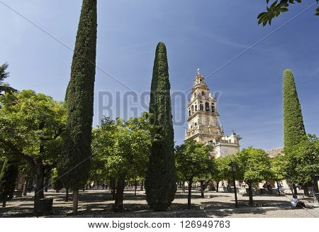 CORDOBA, SPAIN - September 10, 2015: The Bell Tower also called the Tower of Alminar seen from the Courtyard of the Orange Trees of the Mosque-Cathedral of Cordoba on September 10, 2015 in Cordoba, Spain