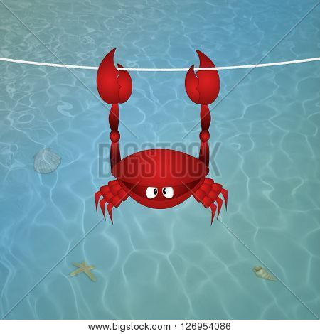 illustration of funny Crab hanging on the water