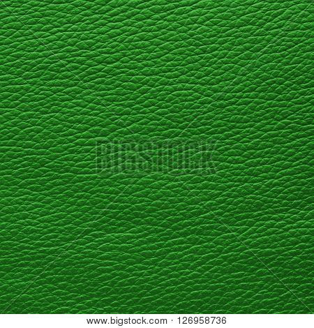 Kelly green leather texture. Close up top view.