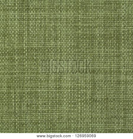 Sage yellow green fabric texture. Close up top view.