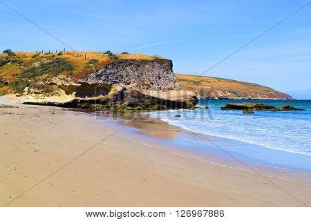 Vast sandy beach with rural grasslands beyond taken at Santa Rosa Island, CA