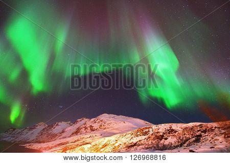 Aurora Borealis Over Ersfjorden, Tromso, Norway