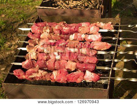 Crude shish kebab skewer on the grill