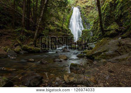 Susan Creek Falls In Idleyld Park, Oregon.