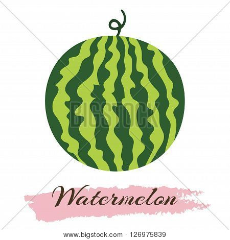 Vector illustration of fresh ripe watermelon. Watermelon vector illustration. Summer concept. Watermelon Isolated. Watermelon icon.