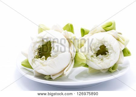 white lotus flower in a dish on white background