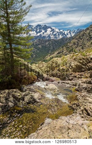 Small mountain stream in Corsica with the Asco mountains and Monte Cinto in the background