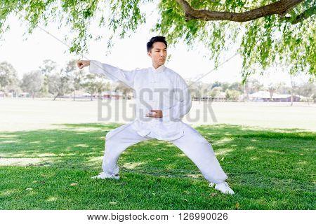 Handsome man practicing thai chi