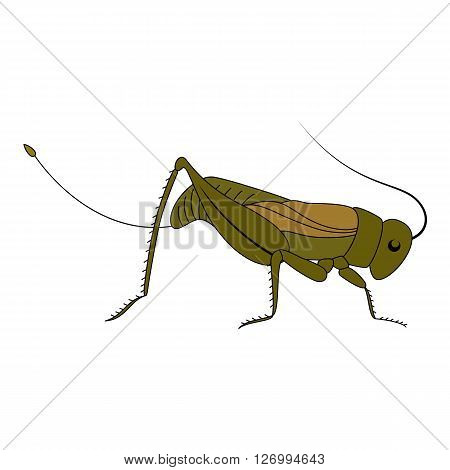 Cute green cartoon grasshopper. Beautiful vector illustration.