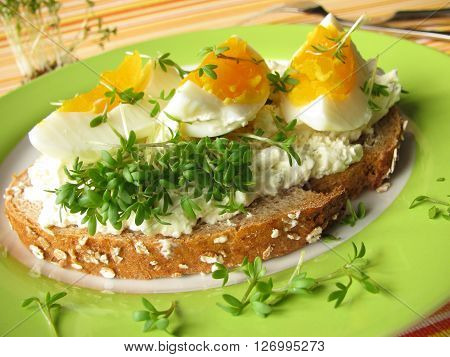 Cream cheese, egg and cress on spelt bread