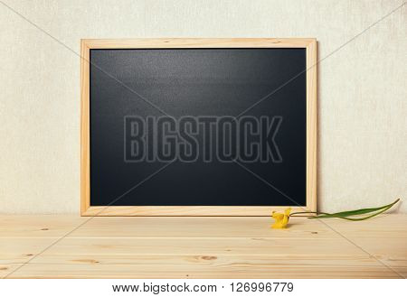 Empty Blank School New Black Board With Tulip On Table, Close Up