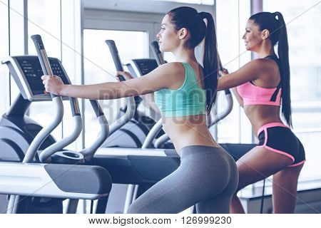 Time to hit the gym. Side view of young beautiful women with perfect bodies in sportswear looking away while working out on stepper at gym