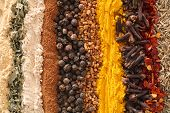 stock photo of marsala  - an assortment of spices used in curries.