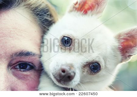 a chihuahua and his owner