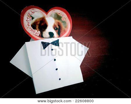 postal_dog