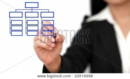 Drawing Business Organization Chart