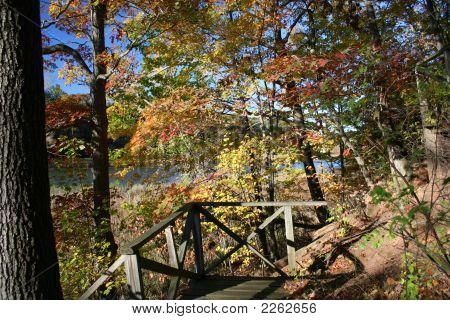 Fall In Seneca Park
