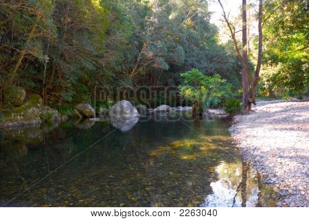River In Australian Bush