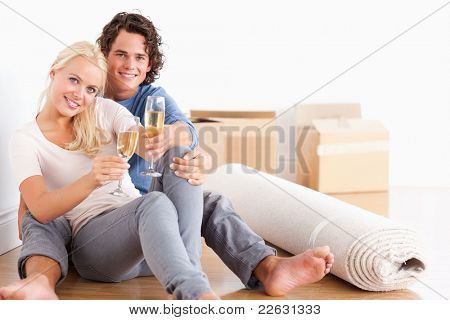 Smiling couple toasting looking at the camera