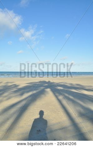 Shadow on the Beach