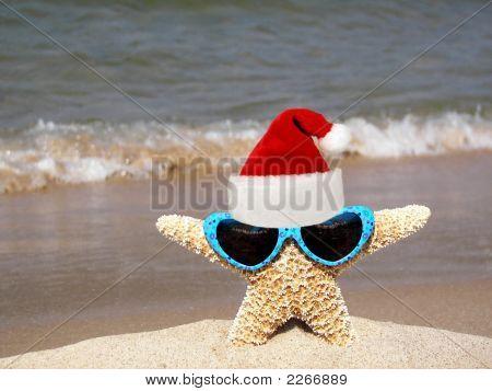 Santa Starfish