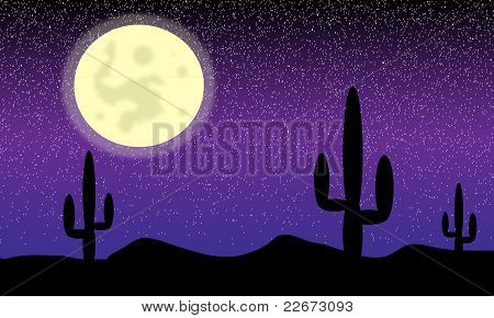 Desert with cactus plants. Night