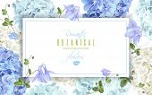 Vector Horizontal Banner With Blue And White Hydrangea Flowers On White Background. Floral Design Fo poster