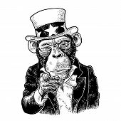 Monkey Uncle Sam With Pointing Finger At Viewer, From Front. I Want You. Vintage Black Engraving Ill poster