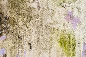 Textured Background Of A Tiled Wall With Traces Of Moisture In The Form Of A Green Fungus Vertical T poster