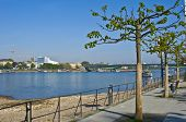 foto of bonnes  - view of the rhine promenade in Bonn on a sunny day - JPG