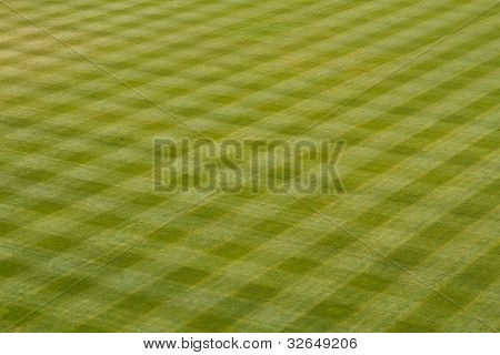 Patterns of the Grass in the Baseball Outfield for sports background