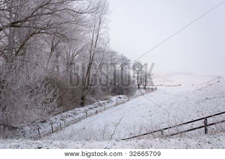 Misty Dutch Winter Landscape With Trees, Fences And A Dike