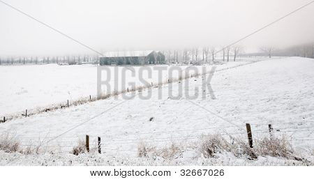 Misty Winter Landscape With A Barn
