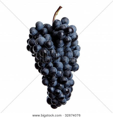 Fresh Bunch Of Red Wine