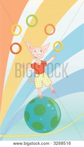 Funny Circus Pig