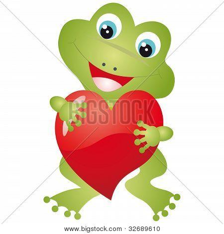 Frog Vector