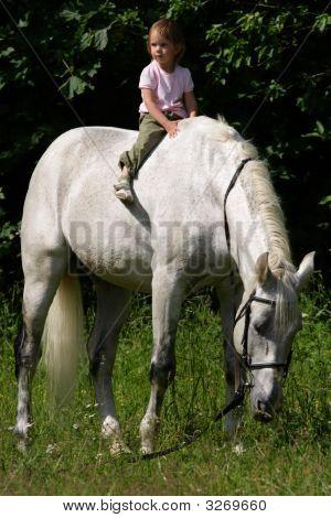 Beauty Small Girl Riding Bareback By Gray Horse