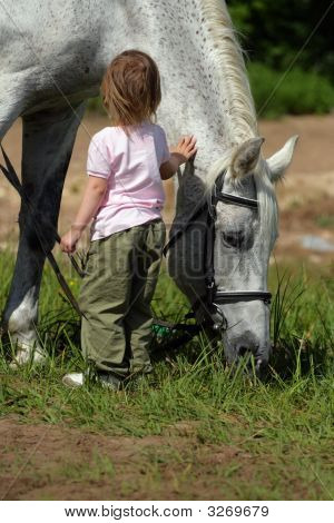 Small Girl And Big Horse