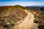 Dirt Road In Southern California Hills poster