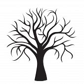 black tree without leaves