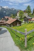 Idyllic Landscape Of Reosrt Village Wengen, Swiss poster