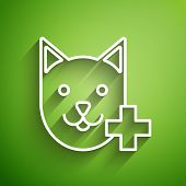 White Line Veterinary Clinic Symbol Icon Isolated On Green Background. Cross With Cat Veterinary Car poster