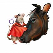Taurus Creative Digital Illustration Of Astrological Sign. Rat Or Mouse Symboll Of 2020 Year Signs I poster