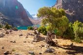 Mountain Landscape With Archa Tree On Shore Of Blue Lake Greater Allo In Fann Mountains On Sunny Bri poster